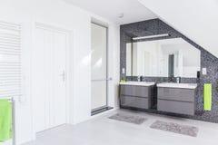 Vit och grå toalett Arkivbild