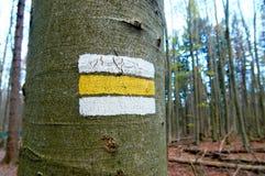 Vit- och gulingfläcken av att fotvandra slingan målade på ett träd i en skog Royaltyfri Fotografi