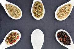 Vit och röd peppar för svart, rosmarin, basilika, fänkål och saltar kryddor Bakgrund av kryddor Bakgrundsram av kryddor Arkivbild