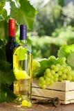 Vit- och rött vinflaska, exponeringsglas, vinranka och druvor royaltyfri bild