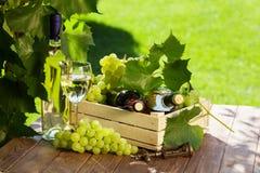 Vit- och rött vinflaska, exponeringsglas, vinranka och druvor royaltyfria foton