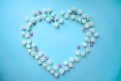 Vit och rosa hjärta formade rosor på blå bakgrund royaltyfri bild