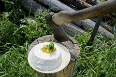 Vit ost med en yxa arkivbild