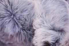 Vit pälsabstrakt begreppbakgrund Royaltyfri Fotografi