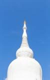 Vit pagod Royaltyfri Bild