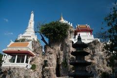 Vit pagod på kullen i den forntida templet, Bangkok, Thailand Royaltyfri Bild