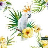 Vit papegoja, hibiskus som är tropisk, palmträd, blommor, modell, tapet Arkivfoton
