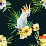 Vit papegoja, hibiskus som är tropisk, palmträd, blommor, modell, tapet Royaltyfri Foto