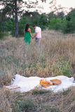 Vit picknickfilt med en korg av mat Fotografering för Bildbyråer