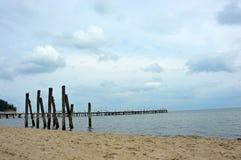 Vit pir vid Östersjön Royaltyfria Bilder
