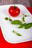 Vit platta med tomaten och kryddor Fotografering för Bildbyråer