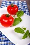 Vit platta med två tomater och basilika Royaltyfria Foton