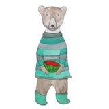 Vit polar nallebjörn i kläder med en vattenmelon Arkivfoto