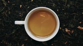 Vit porslinkopp av grönt te bland torra teblad Top beskådar lager videofilmer