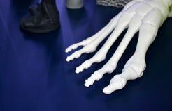Vit prototyp av skelettet för mänsklig fot som skrivs ut på skrivaren 3d på mörk yttersida Arkivfoton