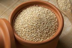 Vit Quinoa i en krus Fotografering för Bildbyråer