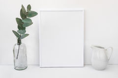 Vit rammodell, eukalyptusfilial i glasflaskan, kanna, utformad minimalist ren bild arkivbilder