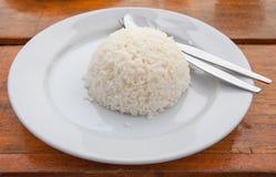 Vit rice Royaltyfri Fotografi