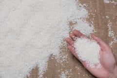 Vit rice Jasmine Rice thailändskt ris, rå ris Arkivfoton