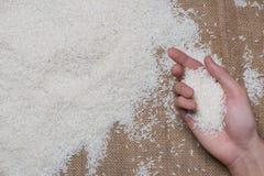 Vit rice Jasmine Rice thailändskt ris, rå ris Royaltyfri Bild
