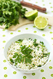 Vit rice med limefrukt och parsley Royaltyfri Foto