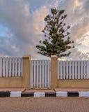 Vit ridit ut träträdgårds- port och staket med bakgrund av det enkla trädet och molnig himmel på soluppgångtid Arkivbilder