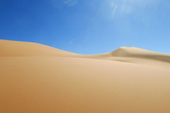 Vit sandökendyn i Sahara Arkivbild