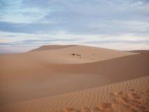 Vit sanddyn royaltyfria bilder