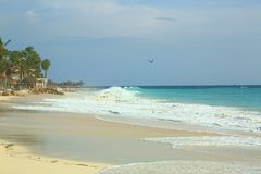 Vit sandstrand för fantastisk skönhet av den Aruba ön Turkoshavsvatten och blå himmel Arkivbild