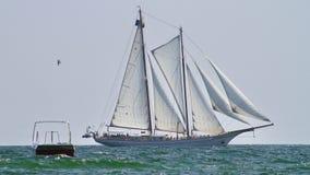 Vit segelbåt Fotografering för Bildbyråer
