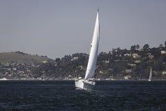 Vit segelbåt i San Francisco Bay på en solig dag Arkivfoton