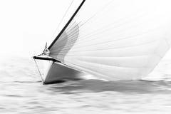 Vit segelbåt med spinnaker Royaltyfri Bild