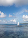 Vit segelbåt på havet Arkivfoto