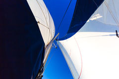 Vit seglar blå himmel royaltyfri bild