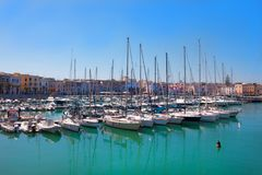 Vit seglar på kusten i sommartid royaltyfria bilder