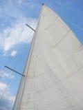 Vit seglar under blå himmel Arkivbild
