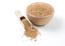 Vit senap i tr?bunke och skopan som isoleras p? vit bakgrund Kryddor och matingredienser royaltyfria foton