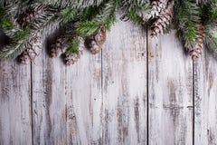 Vit sjaskig julgräns Royaltyfria Foton