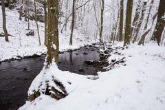 Vit snö vid floden Arkivbild