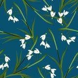 Vit snödroppeblomma på bakgrund för indigoblå blått också vektor för coreldrawillustration stock illustrationer