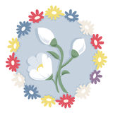 Vit snödroppeblomma på blåttcirkel Royaltyfria Foton