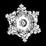 Vit snöflinga som isoleras på svart bakgrund arkivfoto