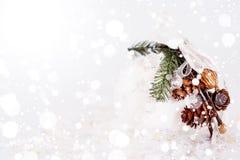 Vit snöig julgarnering med kottar Royaltyfria Bilder