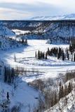 Vit snowfield nära Alaska den järnväg linjen royaltyfria bilder