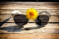vit solglasögon Royaltyfri Foto