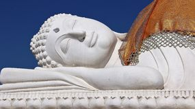 Vit som vilar stora buddha med goldencharmeuse royaltyfria foton