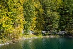 Vit-sten invallning på kusten av sjön Ritsa, Caucaen Fotografering för Bildbyråer