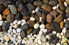 Vit sten och brun sten Royaltyfri Foto