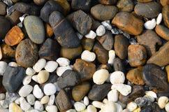 Vit sten och brun sten Royaltyfri Fotografi
