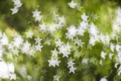 Vit stjärnabokeh på grön bakgrund Arkivfoton